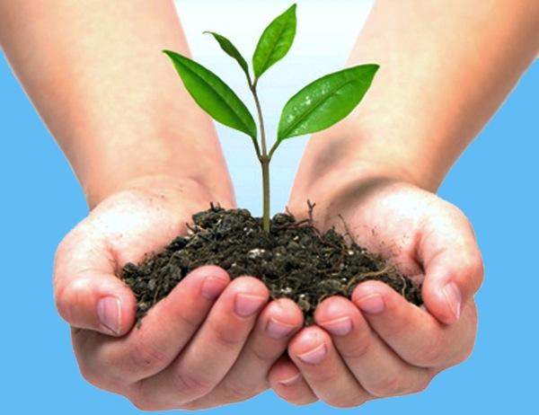 Eurocanarias Oftalmológica, con el Día Mundial del Medio Ambiente