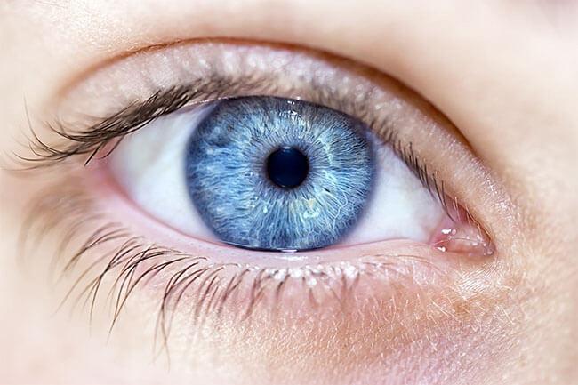 El 80% de los casos de ceguera se pueden prevenir